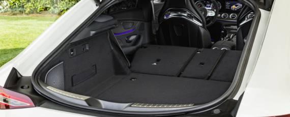 Noul Mercedes-AMG GT 4-Door Coupe (10)